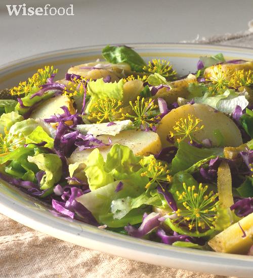 Kartofler i smuk salat med spidskål
