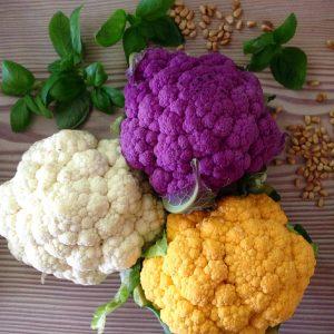 tre-farver-blomkaal-lisbethtordendahl