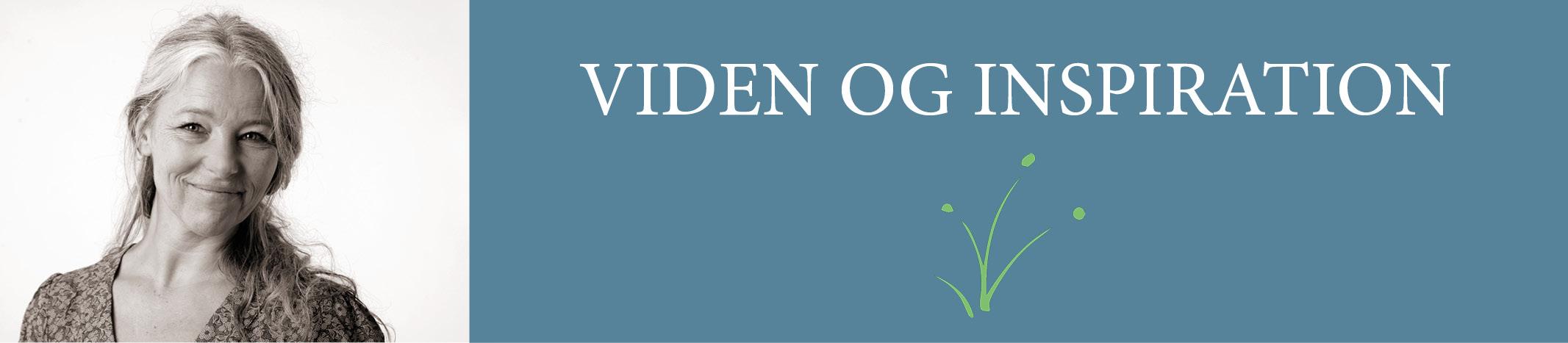 Viden og inspiration Lisbeth Tordendahl blog