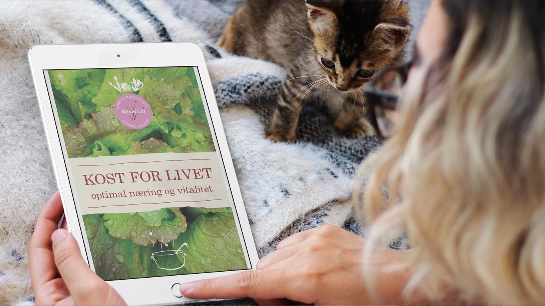Kost For Livet - e-bog af Lisbeth Tordendahl