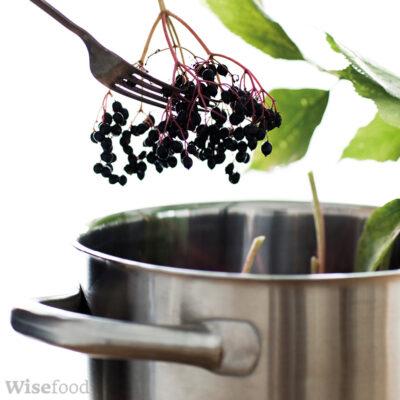 Hyldebær – lav din egen hyldebærsaft uden sukker